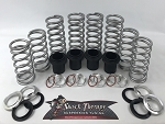 Shock Therapy Dual Rate Spring Kit (DRS) 2015-2017 Polaris S 1000 2 Seat