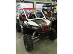 Crash Addict RZR Grills