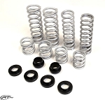 RT Pro RZR XP 900 Walker Evans Edition (2 Seat) Springs Kit